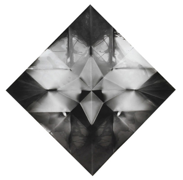 Matthew Schreiber, Dove 2, 2011Photogram, 70 x 70 inches (177.80 x 177.80 cm)