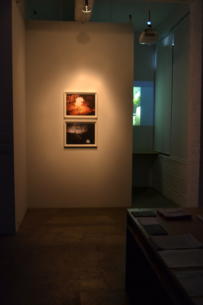N.O.E. Installation view
