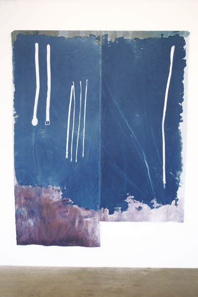 Travis Boyer,  F-14 Air Show, 2012 Cyanotype and dye on silk,  108 x 84 inches
