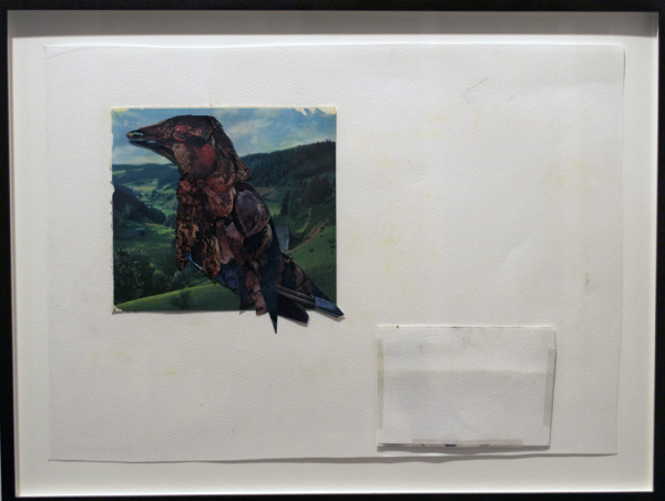 Tom Thayer,  Coal Bird, 2007-2009 paper, tape, collage,  13 x 18 inches