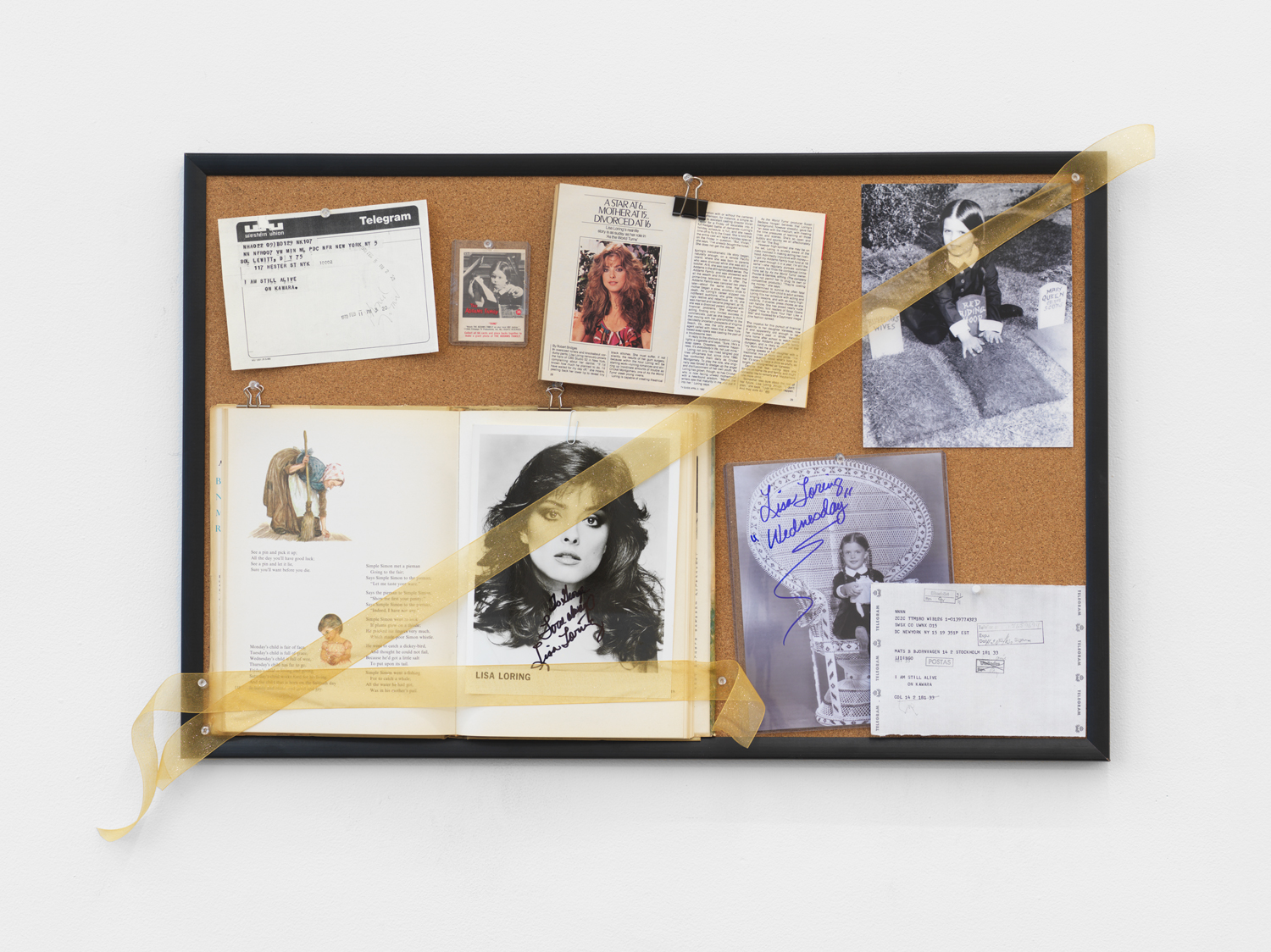 Selections from the Archive of Amber Brown